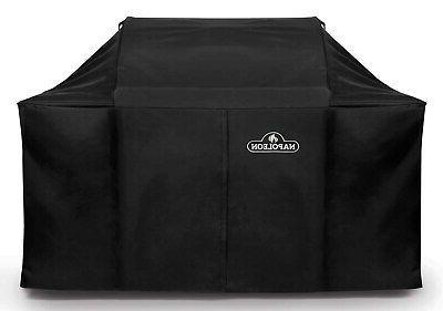 Napoleon LEX 605 & Charcoal Professional Grill Cover